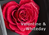 バレンタイン ホワイトデー プレゼント