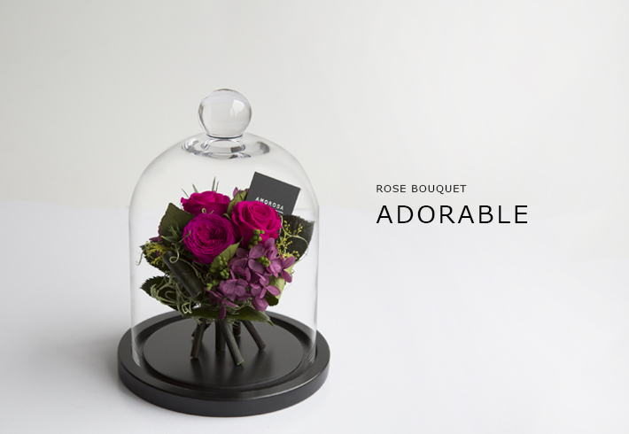 ADORABLE-ps.jpg
