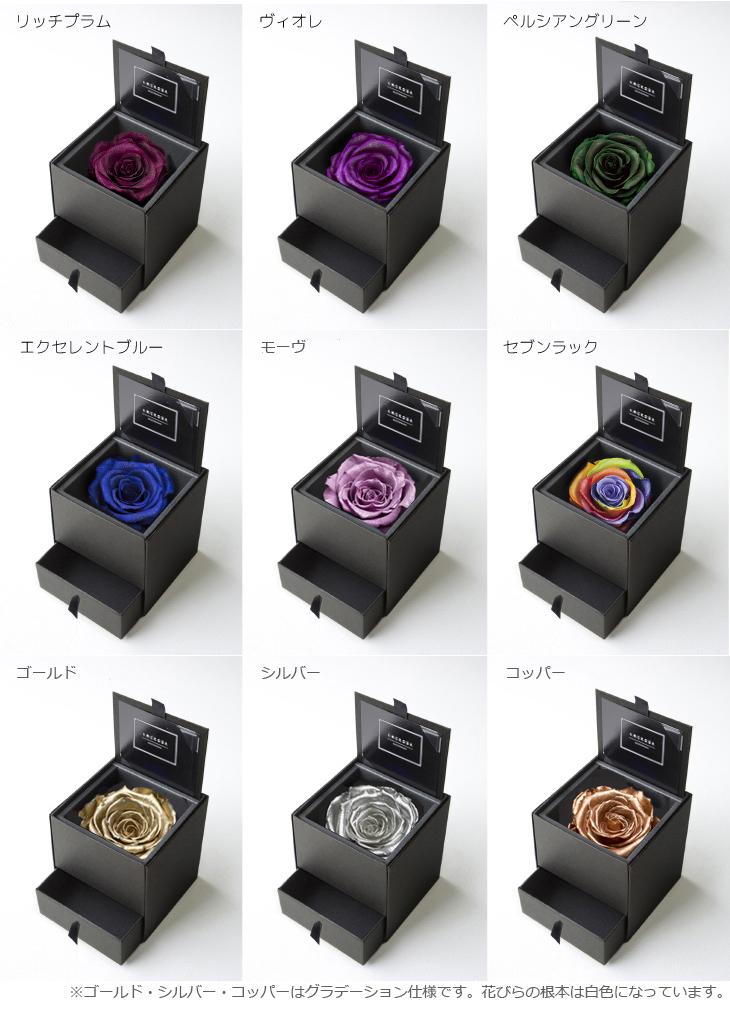 AM90-color2-3.jpg