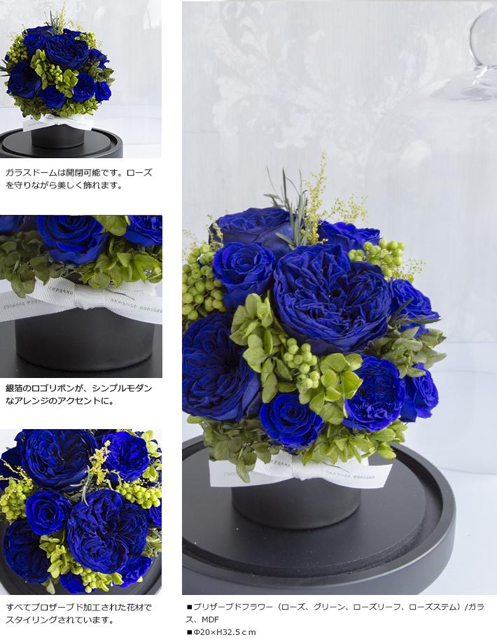 CHERISH_BLUE_L_02.jpg