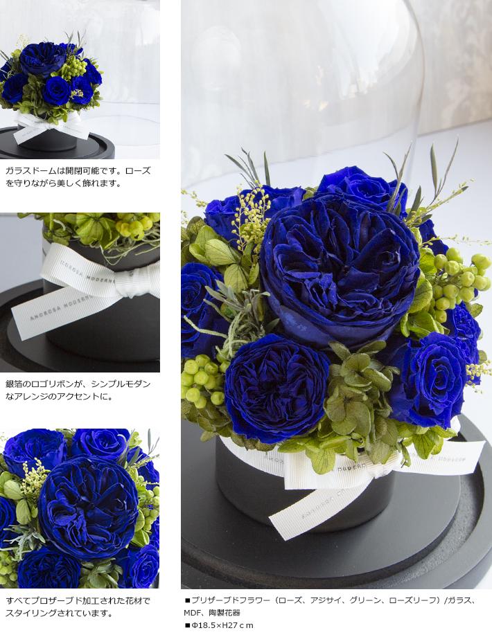 CHERISH_BLUE_M_02.jpg