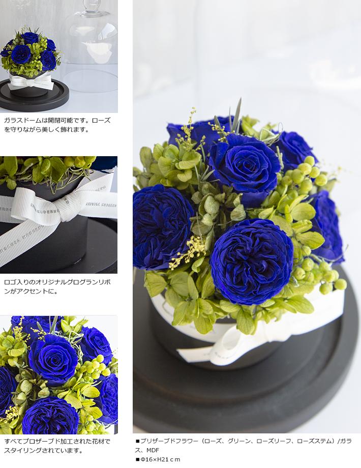 CHERISH_BLUE_S_03.jpg