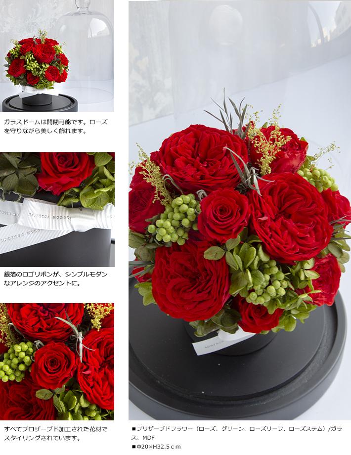 CHERISH_RED_L_02.jpg