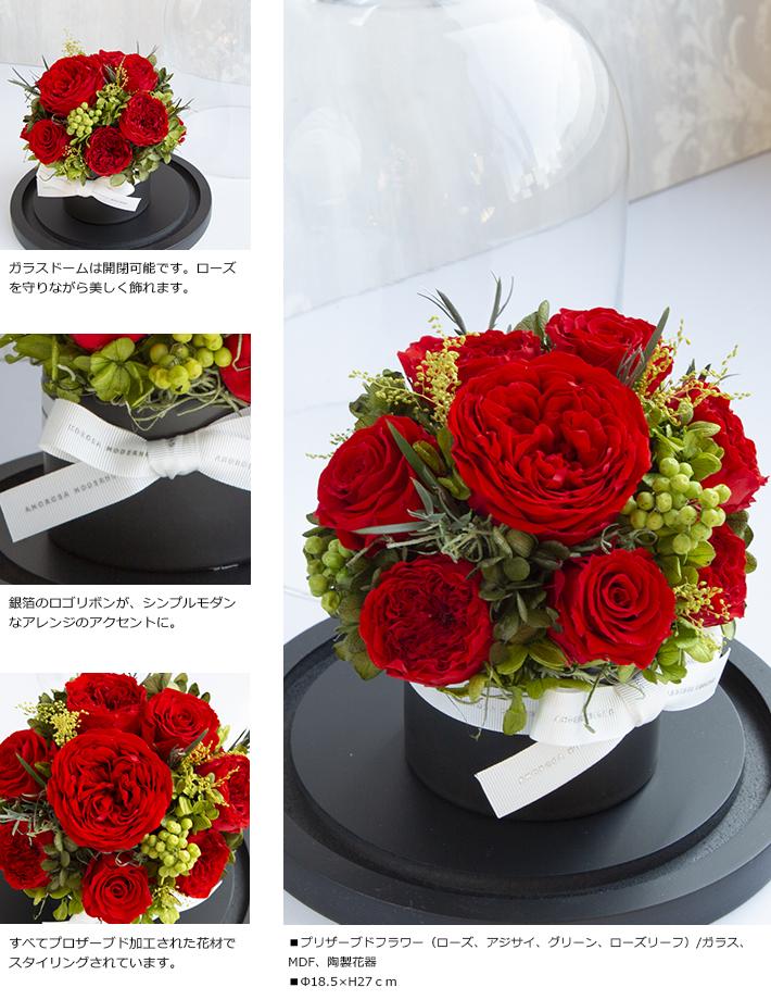 CHERISH_RED_M_02.jpg