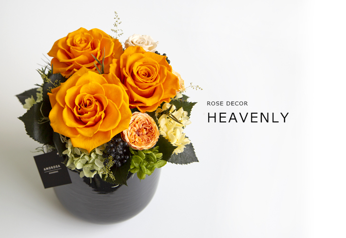 HEAVENLY_ORANGETTE_L_01.jpg