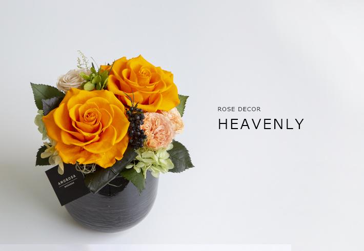 HEAVENLY_ORANGETTE_M_01.jpg