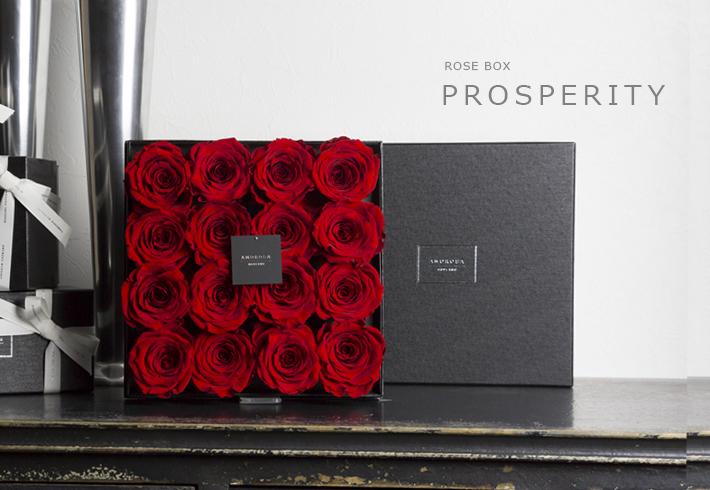 prosperity-title-red.jpg